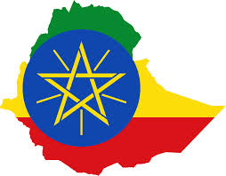 Local insurers keep Ethiopian Reinsurance afloat