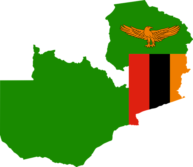 zambia proposes 5 withholding tax for foreign reinsurers