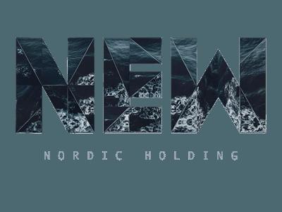 new-nordic-holding-logo